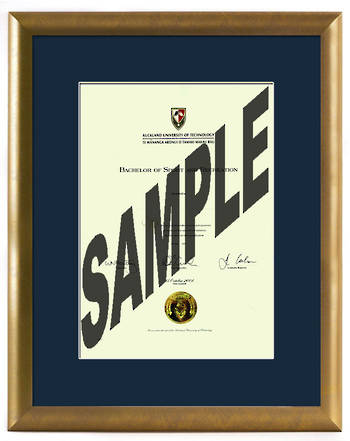 AUT Degree Gold Frame 423 CONSERVATION