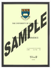 Auckland University Degree 1031p
