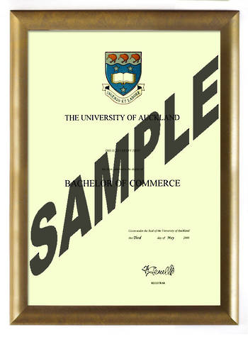 Auckland University Degree Gold Frame 802 CONSERVATION