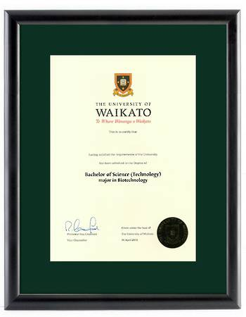 Waikato Degree 28mb 264