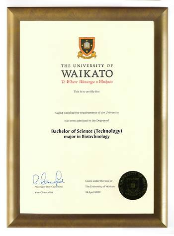 Waikato Degree Gold Frame 802 CONSERVATION