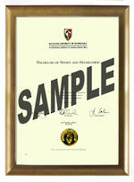 AUT Degree Gold Frame 802