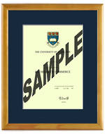 Auckland University Degree 28hon837
