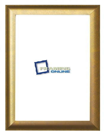 "12""x16"" Gold Photoframe 802gbr"