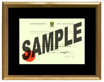 Otago Degree Gold Frame 8433 CONSERVATION